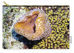 Carry-all Pouch featuring the photograph Pink Vase Sponge by Perla Copernik