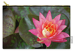Carry-all Pouch featuring the photograph Pink Water Lily Beauty by Amee Cave
