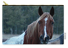 Carry-all Pouch featuring the photograph Pinto by Ann E Robson
