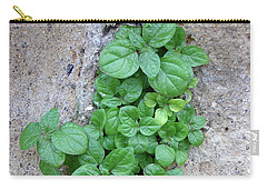 Plant In Stone Naples Italy Carry-all Pouch