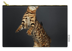 Playful Female Bengal Cat Stands On Rear Legs Carry-all Pouch by Sergey Taran