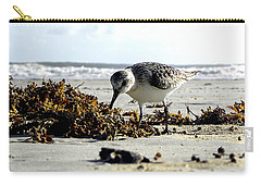 Plover On Daytona Beach Carry-all Pouch by Chris Mercer