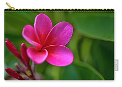 Plumeria - Royal Hawaiian Carry-all Pouch