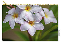 Plumeria 3 Carry-all Pouch