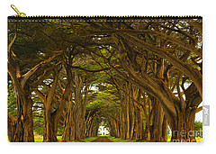 Point Reyes Cypress Tunnel Carry-all Pouch