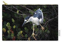 Poise Carry-all Pouch