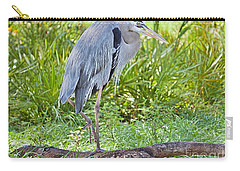 Poised And Focused Carry-all Pouch by Judy Kay