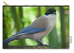 Carry-all Pouch featuring the photograph Poised by Judy Kay