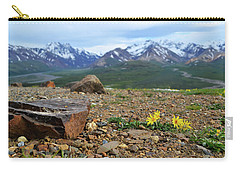 Polychrome Pass, Denali Carry-all Pouch