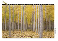 Poplar Tree Farm In Fall Season Carry-all Pouch by Jit Lim