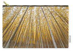 Carry-all Pouch featuring the photograph Poplar Tree Farm Symmetry In Oregon by Jit Lim