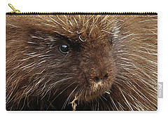 Carry-all Pouch featuring the photograph Porcupine by Glenn Gordon