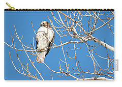 portract of Hawk Carry-all Pouch