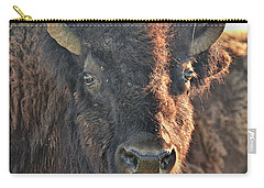 Portrait Of A Buffalo Carry-all Pouch by Nancy Landry