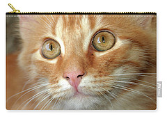 Portrait Of A Cat Carry-all Pouch