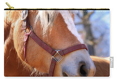Carry-all Pouch featuring the photograph Portrait Of A Haflinger - Niko by Angela Rath