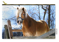 Carry-all Pouch featuring the photograph Portrait Of A Haflinger - Niko In Winter by Angela Rath
