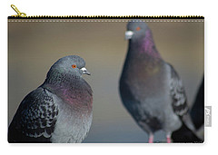 Carry-all Pouch featuring the photograph Portrait Of A Pigeon by Lora Lee Chapman