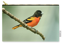 Portrait Of A Singing Baltimore Oriole Carry-all Pouch