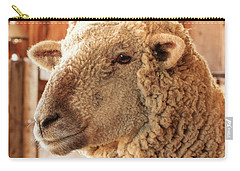 Portrait Of A Southdown Sheep Carry-all Pouch