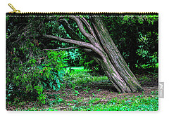 Carry-all Pouch featuring the photograph Portrait Of A Tree by Madeline Ellis