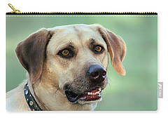 Portrait Of A Yellow Labrador Retriever Carry-all Pouch by Sheila Brown