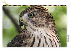 Portrait Of A Young Cooper's Hawk Carry-all Pouch