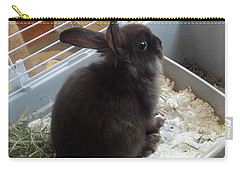 Carry-all Pouch featuring the photograph Portrait Of Bunbunz by Denise Fulmer