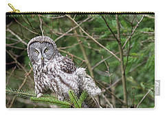 Portrait Of Gray Owl Carry-all Pouch