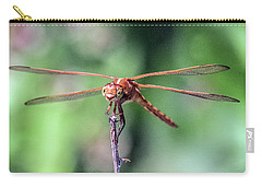 Portrait Of Perched Dragonfly Carry-all Pouch