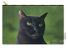 Carry-all Pouch featuring the photograph Portrait Of Salem The Cat by Lee Boyd and Janette Boyd