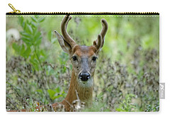 Portriat Of Male Deer Carry-all Pouch
