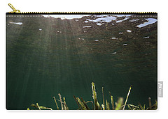 Posidonia Carry-all Pouch