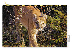 Power And Grace Carry-all Pouch by Jack Bell