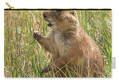 Prairie Dog Carry-all Pouch by Brenda Jacobs