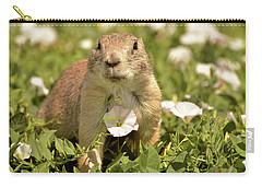 Prairie Dog Carry-all Pouch by Nancy Landry