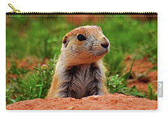 Carry-all Pouch featuring the photograph Prairie Dogs 007 by George Bostian