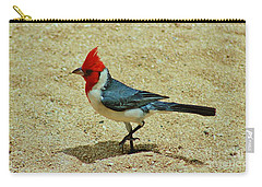 Prancing Brazil Cardinal Carry-all Pouch