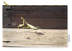 Praying Mantis  Carry-all Pouch by Don Koester