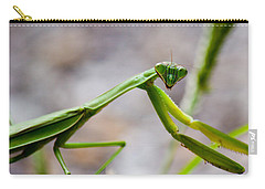 Praying Mantis Looking Carry-all Pouch