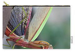 Carry-all Pouch featuring the photograph Praying Mantis by Stacey Zimmerman