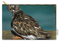 Preening Turnstone Carry-all Pouch by John Topman