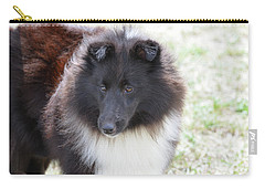 Pretty Black And White Sheltie Dog Carry-all Pouch