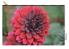 Pretty Blooming Red Dahlia Flower Blossom Carry-all Pouch