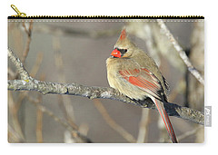 Pretty Female Cardinal Carry-all Pouch by Brook Burling
