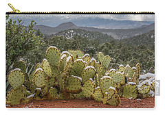 Cactus Country Carry-all Pouch