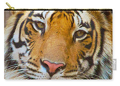 Prime Tiger Carry-all Pouch by David Beebe
