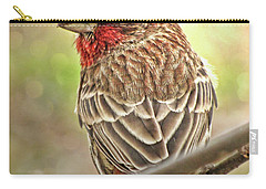Carry-all Pouch featuring the photograph Prince  by Debbie Portwood