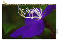 Princess Flower Flow Carry-all Pouch by Warren Thompson