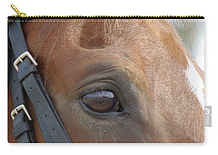 Carry-all Pouch featuring the photograph Prinz by Jim and Emily Bush
